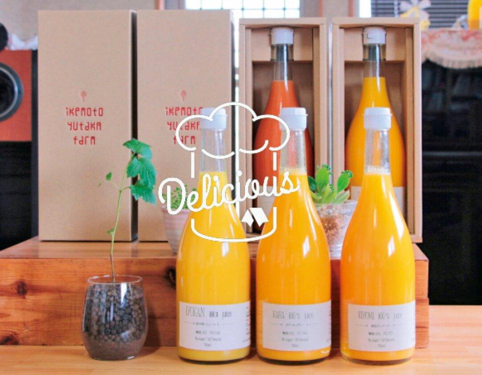 100%果汁ジュース(伊予柑・タロッコ)