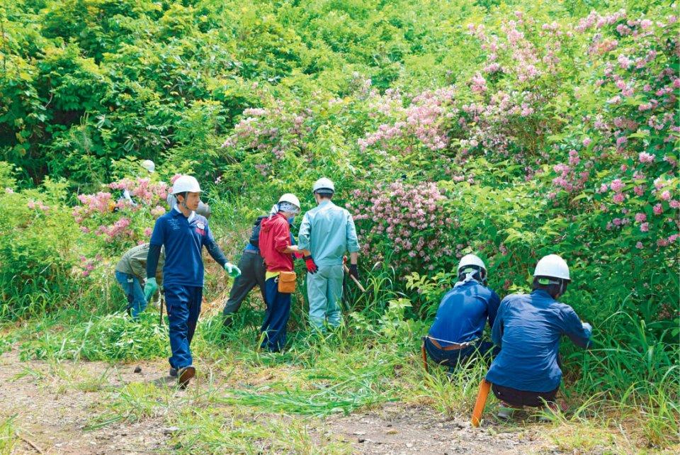 森林保全活動「飛騨高山きつつきの森・荘川」では、200年先を見据えた森林づくりをコンセプトに、剪定(せんてい)や植林、草刈りなど、地元住民とともに整備を進める