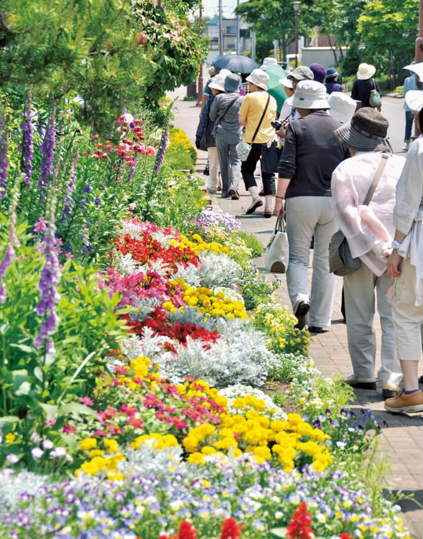 オープンガーデン/個人やお店などが自分で手入れしている庭を一定期間公開するイベント。6月下旬から8月下旬が見ごろ