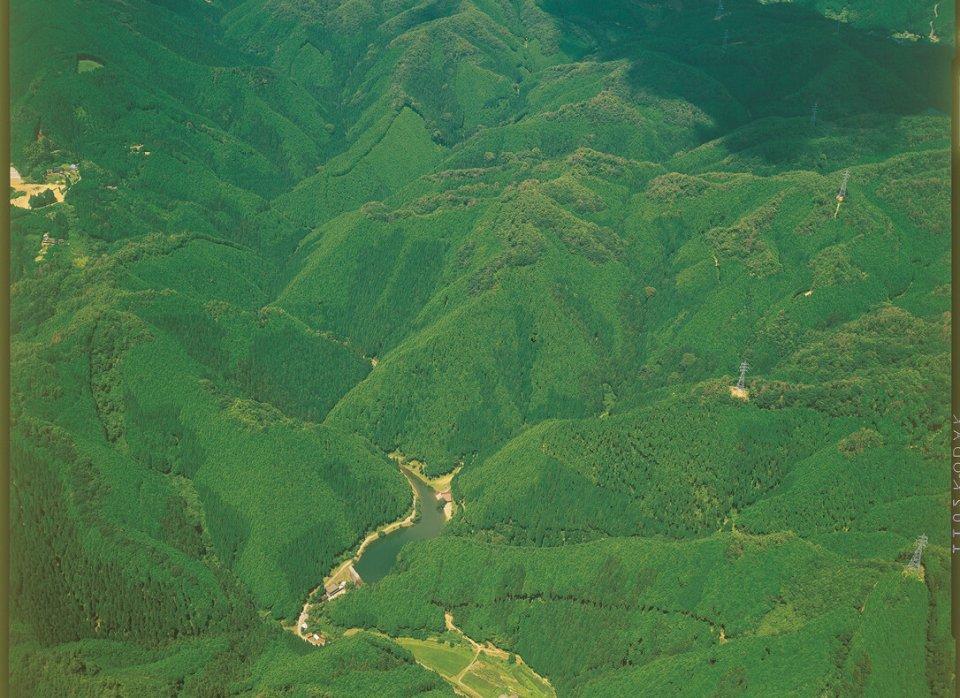 県内約380haの自社林を所有しており、産学官連携で学生研修やインターンシップを受け入れている