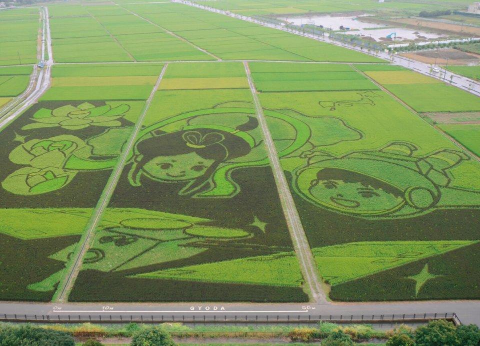 2015年に認定された埼玉県行田市の「最大の田んぼアート」。芸術性は数字で計測できないため、面積と参加人数で記録に挑戦した