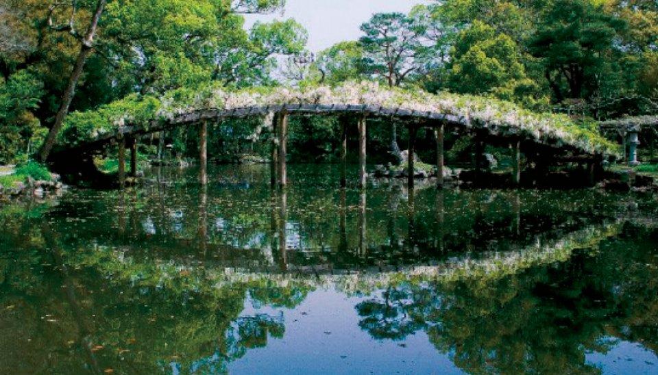 天赦園:七代藩主伊達宗紀公が隠居所として、慶応2(1866)年竣工。白藤太鼓橋は浄土の世界に渡る「虹の掛橋」といわれる