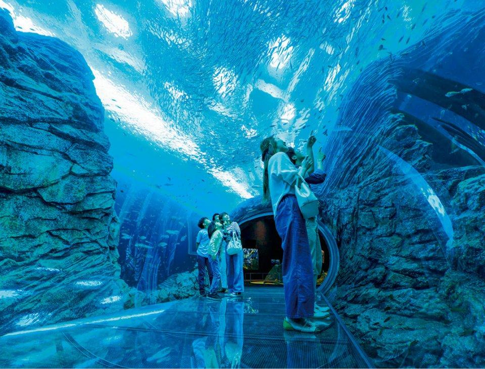 2018年にグランドオープンした上越市立水族博物館「うみがたり」