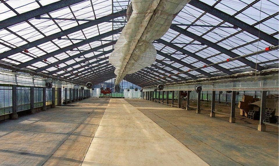 温室内の床は土(写真・2枚目)から土間コンクリート(同・3枚目)にし、防災性と同時に清掃の簡便性をアップ