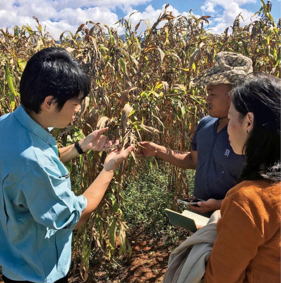 ミャンマー、シャン州の州都タウンジーに足を運び、現地の農家と直接会って情報収集や栽培指導にあたる西田啓吾さん