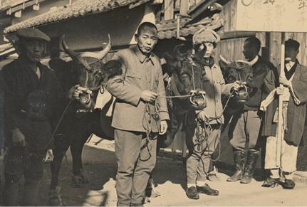 戦後、品評会で優勝した牛を買い付け、町を引き回してお披露目。ちんどん屋を出して販売日を知らせた