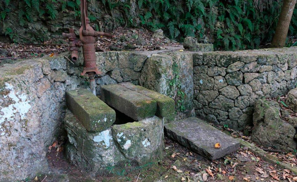 敷地内の裏庭にある古い井戸も水量は豊富