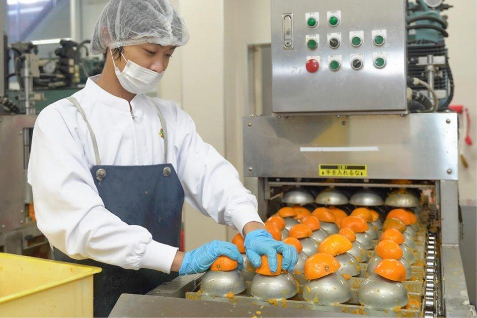 オリジナルの搾汁機で100%ピュアジュースを生産。1本750mlでミカンを約30個も使用する