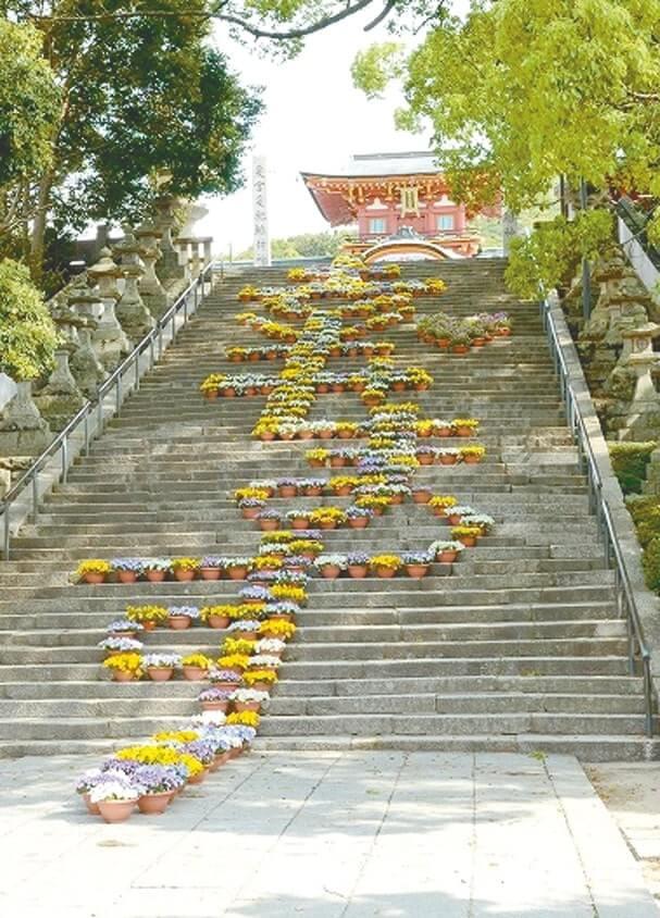 長い石階段をうまく利用した花文字「幸せます」で観光客をおもてなし