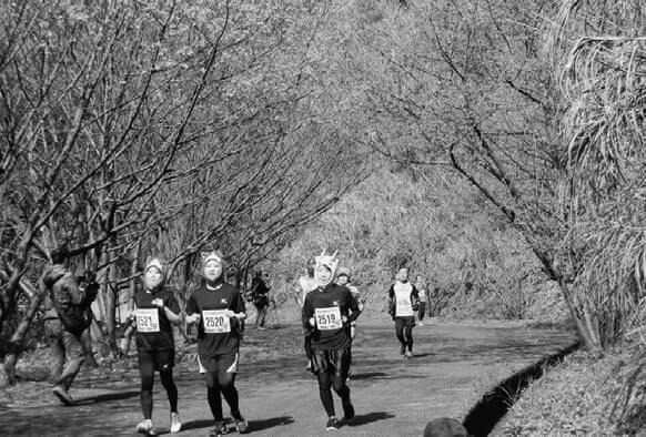 桜の中を走る参加者