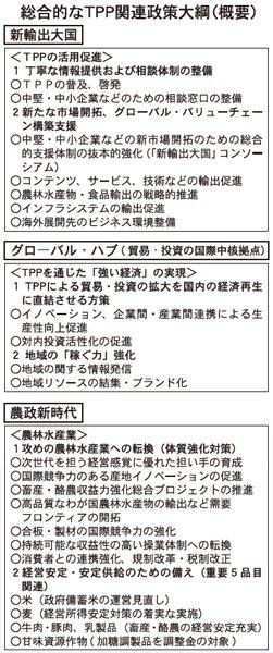 総合的なTPP関連政策大網(概要)