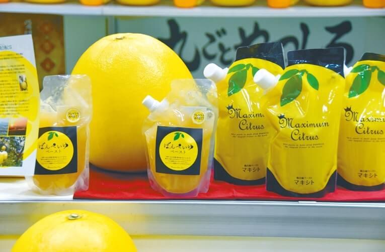 八代商工会議所が開発した世界最大のかんきつ類「晩白柚」のペースト