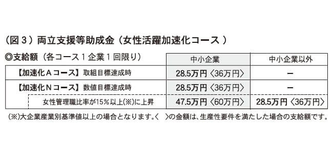 (図3)両立支援等助成金(女性活躍加速化コース)