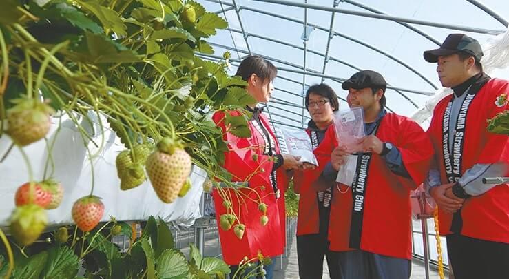 地元4農園の若手生産者たち